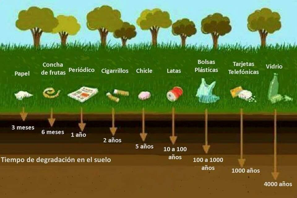 tipos de productos biodegradables